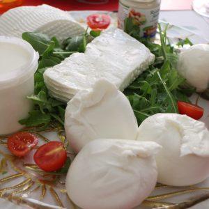 南イタリア チーズ旅!1日目